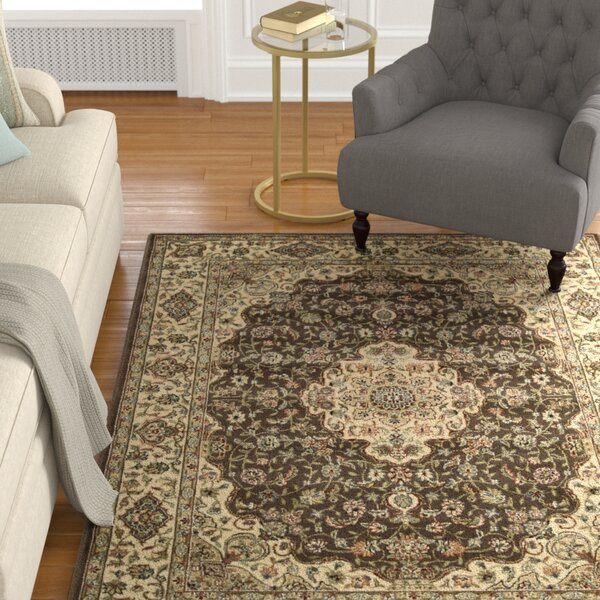 Bayhills Chocolate/Beige Area Rug by Astoria Grand