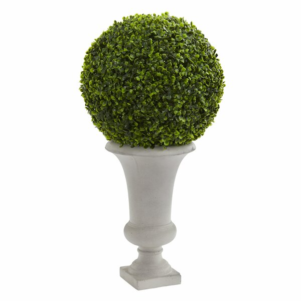 Ball Artificial Plant Floor Boxwood Topiary in Urn by Darby Home Co
