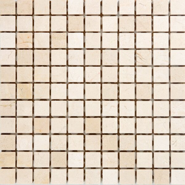 1 x 1 Marble Mosaic Tile in Polished Crema marfil by Epoch Architectural Surfaces