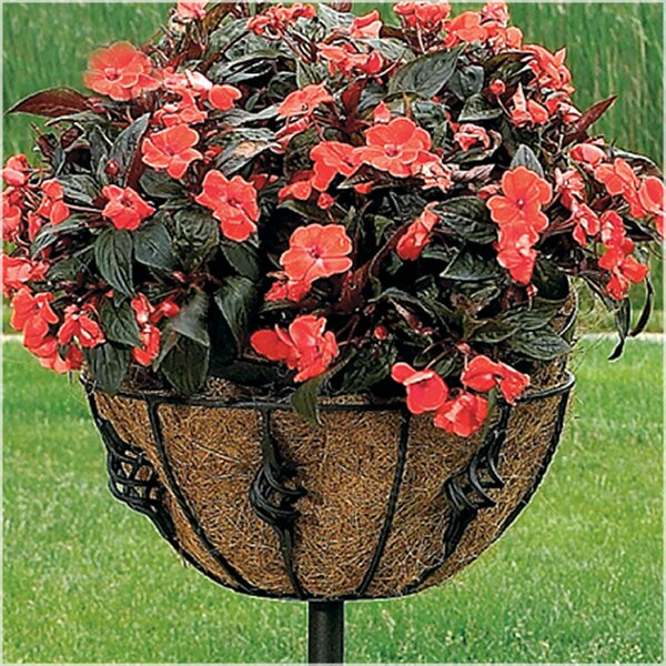 Antoinette Plant Stand by CobraCo