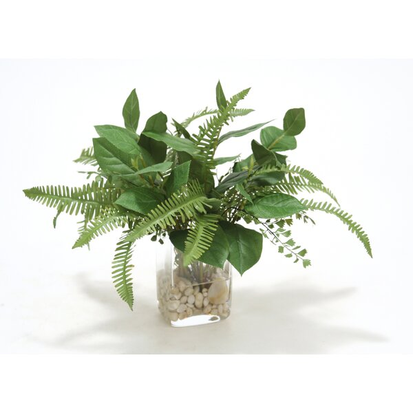 Waterlook Bay Leaf Foliage, Fern, Willow Desk Top Plant in Decorative Vase by Distinctive Designs