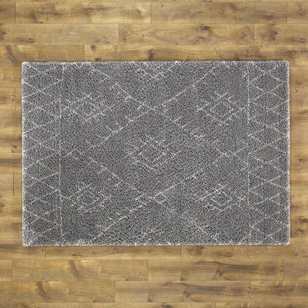 Wylie Gray Area Rug by Birch Lane™