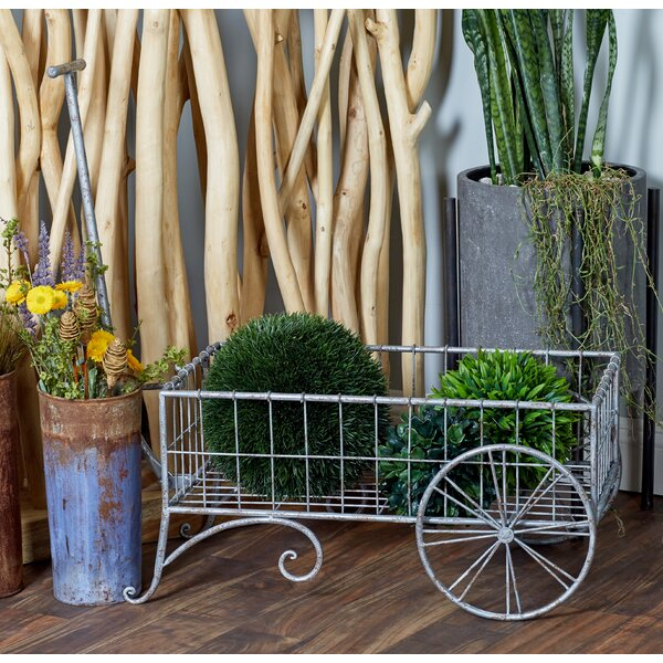Modern 2-Wheel Pull Wheelbarrow Planter by Cole & Grey