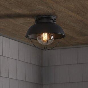 Black Outdoor Ceiling Light Wayfair
