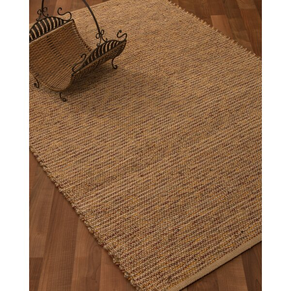 Amsterdam Hand-Woven Brown Area Rug by Natural Area Rugs
