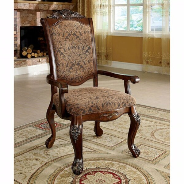 Barrville Arm Chair (Set of 2) by Astoria Grand