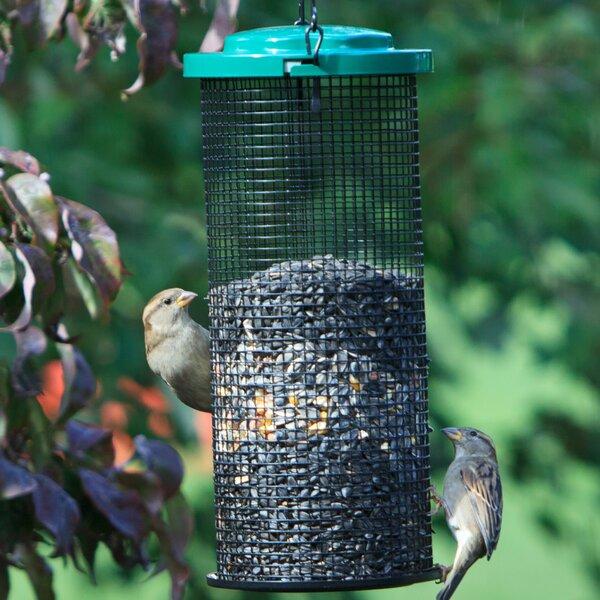 Sunflower Mesh Tube Bird Feeder by Perky Pet