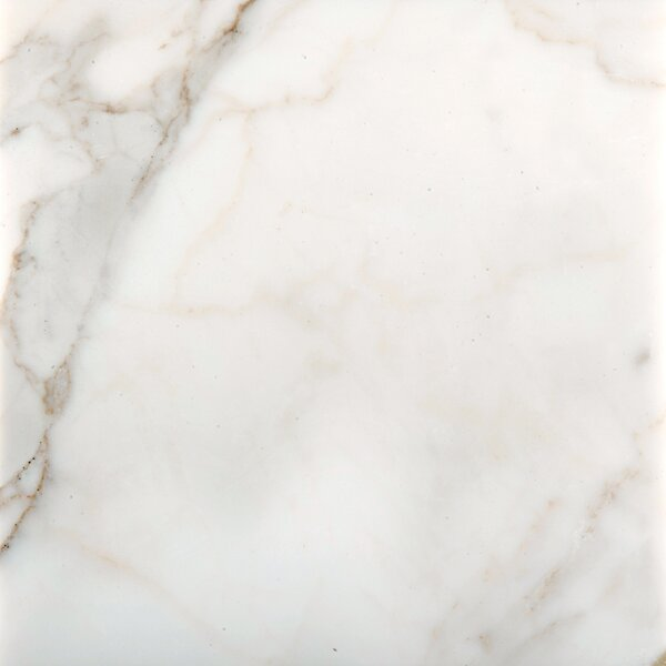 Marble 12 x 12 Field Tile in Calacata Oro by Emser Tile