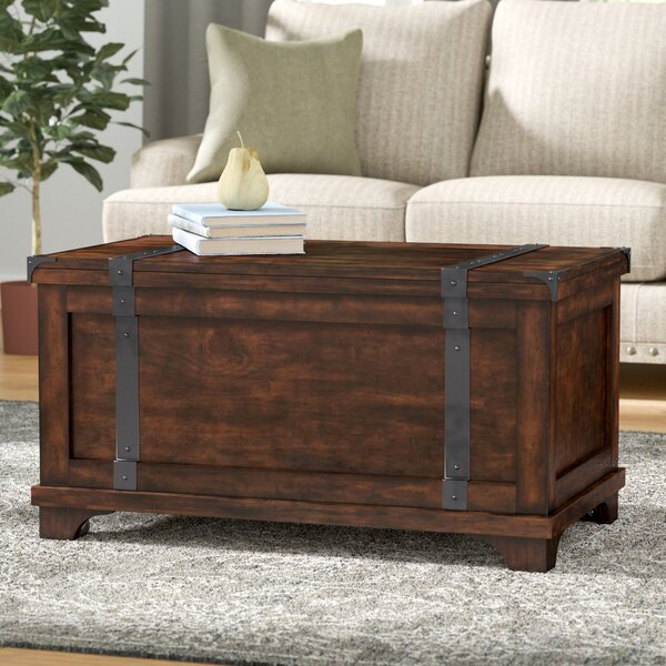 Hebbville Lift Top Coffee Table with Storage by Trent Austin Design