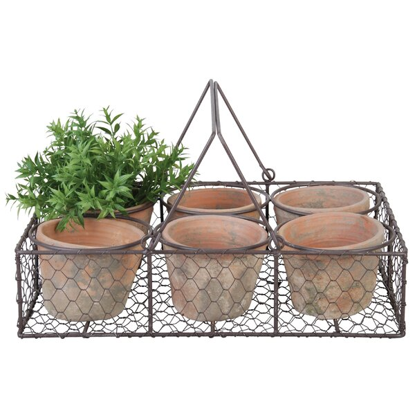 6-Piece Terracotta Pot Planter Set in Metal Basket by EsschertDesign