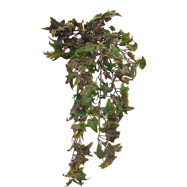 Ivy Hanging Bush by Fleur De Lis Living