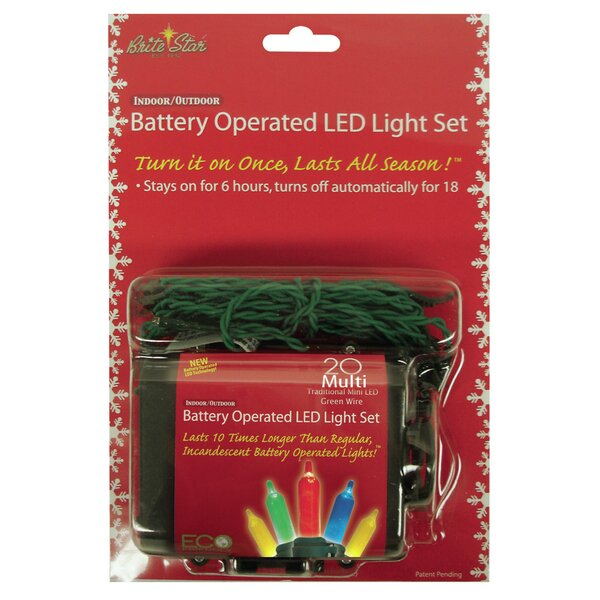 Trad 20 Light String Lights by The Holiday Aisle