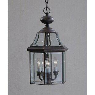 Compare prices Janette 3-Light Outdoor Hanging Lantern By Darby Home Co