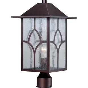 Great Price Dohn Outdoor 1-Light Lantern Head By Red Barrel Studio