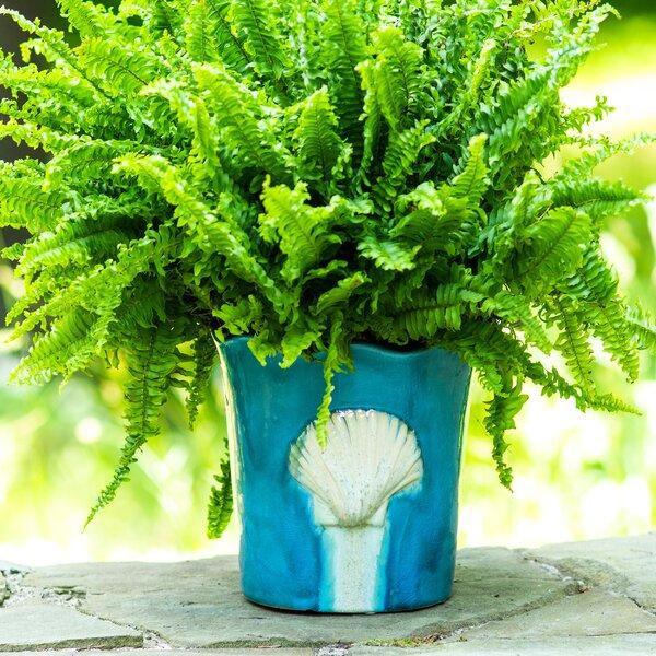 Elizabella Seashell Stoneware Pot Planter by Highland Dunes