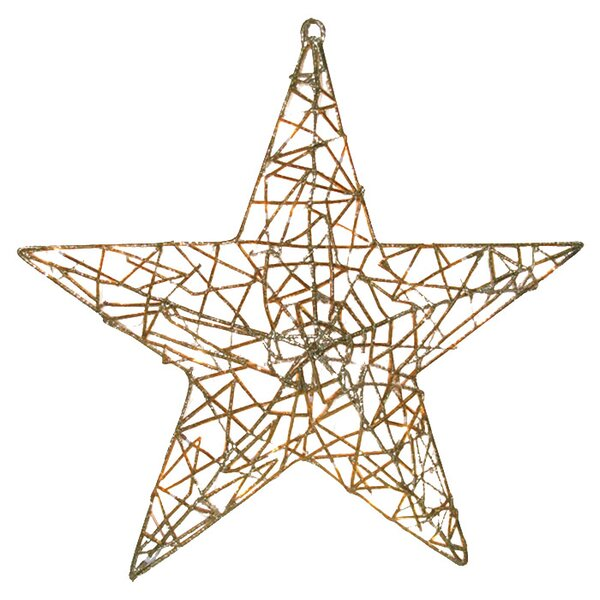 Spun Glitter 20 Light Star Christmas Decoration by Brite Star