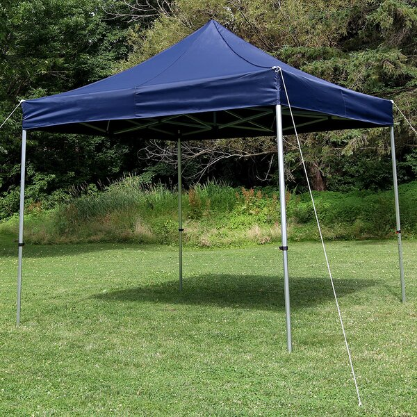 Amaris 10 Ft. W x 10 Ft. D Metal Pop-Up Canopy by Freeport Park