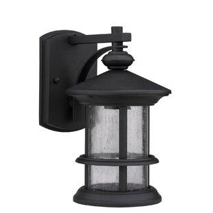 Online Reviews Edington 1-Light Outdoor Wall Lantern By Alcott Hill