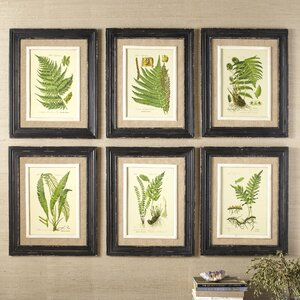 Frond Framed Prints (Set of 6) by Birch Lane™