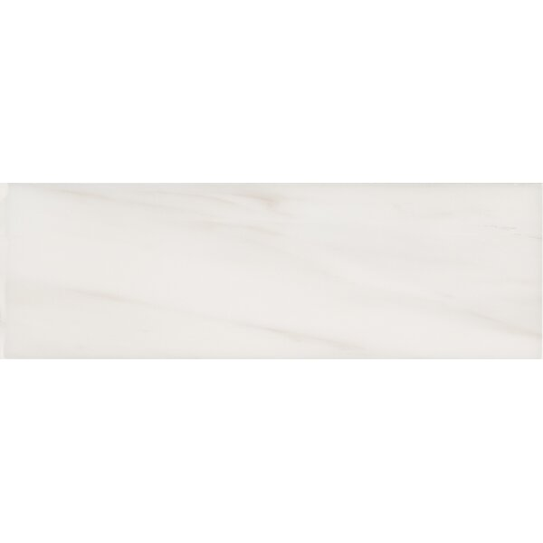 Bianco Dolomite 4 x 12 Polished Marble Subway Tile in White by MSI
