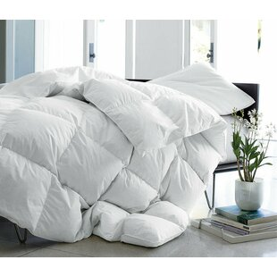Review Lightweight Down Comforter By Alwyn Home
