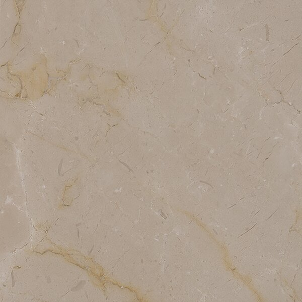 12 x 12 Marble Field Tile in Polished Crema Marfil by MSI