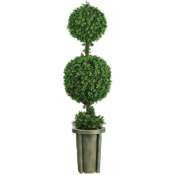 Double Ball Leucodendron Topiary in Decorative Vase by Nearly Natural