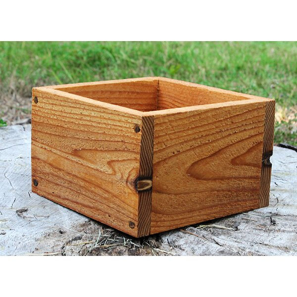 Kip Square New Cedar Planters Box by Millwood Pines