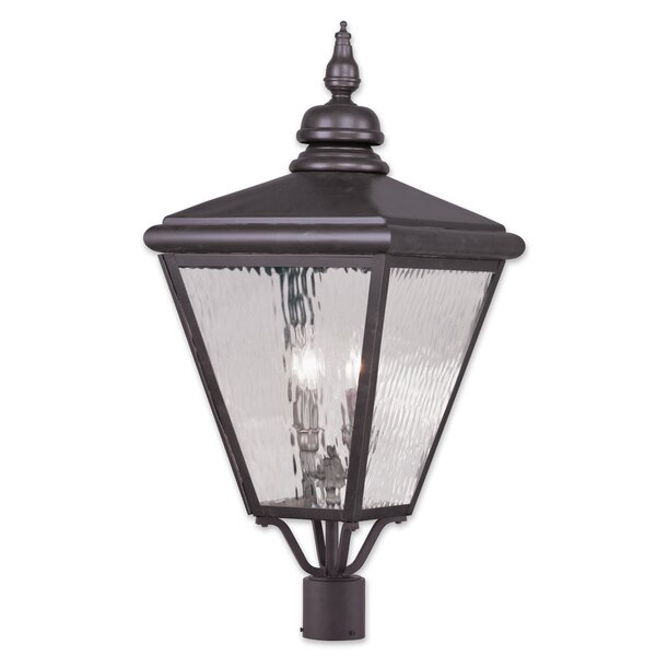 Philip 4-Light Lantern Head by Darby Home Co