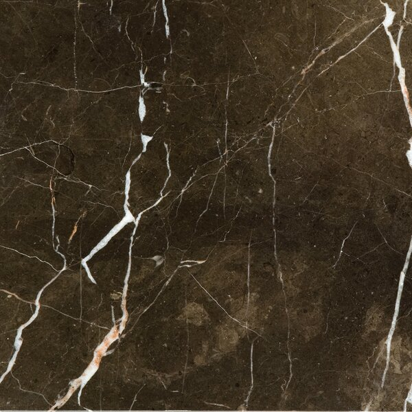 Marble 12 x 12 Field Tile in St.Croix  Brown by Emser Tile