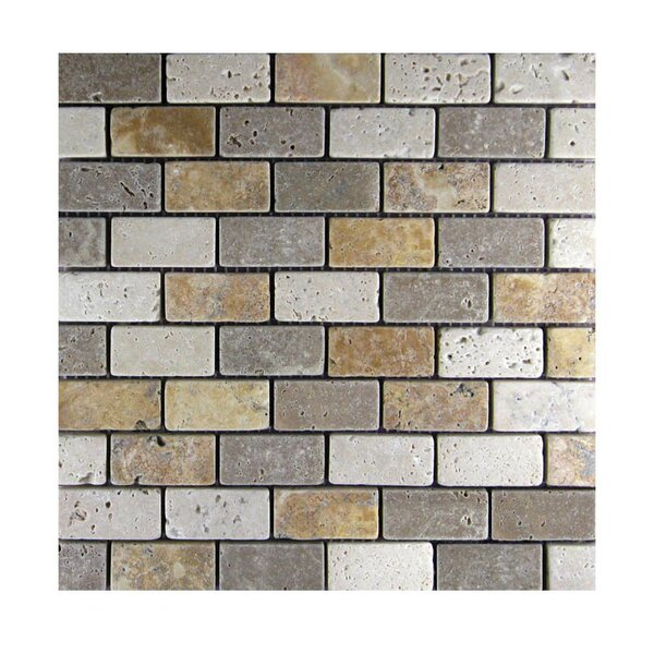 Tumbled 1 x 2 Natural Stone Mosaic Tile in Gold/Noce by QDI Surfaces