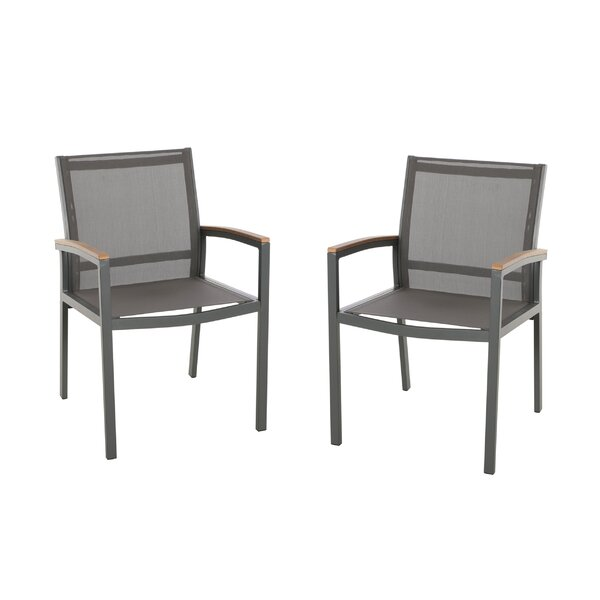 Orellana Patio Dining Chair (Set of 2) by Ebern De