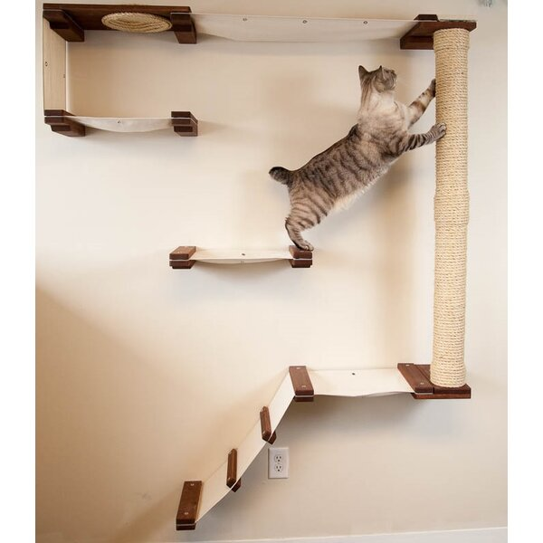 69 Mod Multi-Level Wall-Mounted Climb Track by Cat