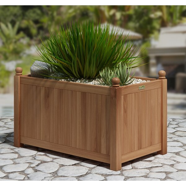 Trent Rectangular Teak Planter Box by August Grove