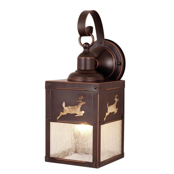Josefina Outdoor Wall Lantern by Loon Peak