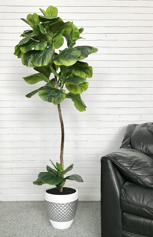 High Quality Fiddle Leaf Fig Floor Palm Tree In Pot
