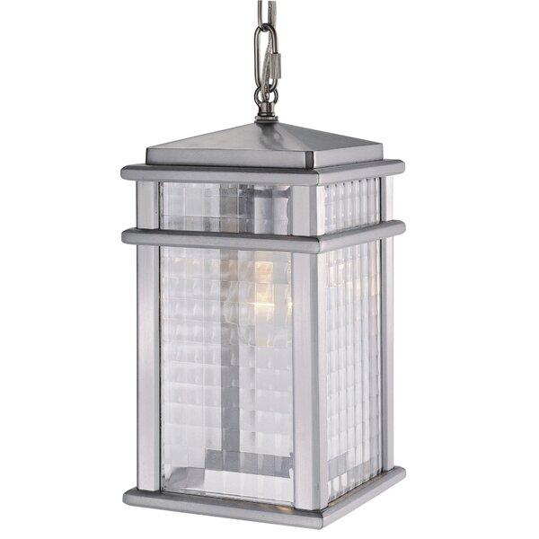Divya 1-Light Outdoor Hanging Lantern by Brayden Studio