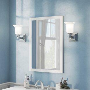 24x48 Mirror Wayfair