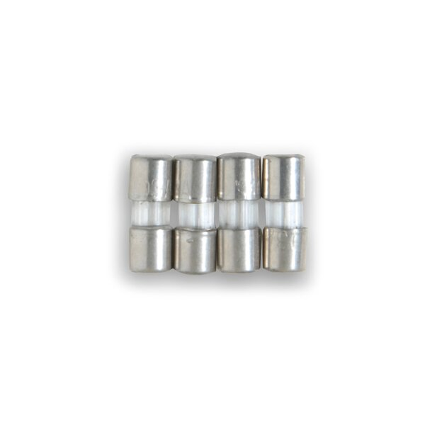 Replacement Fuse (Set of 4) by National Tree Co.
