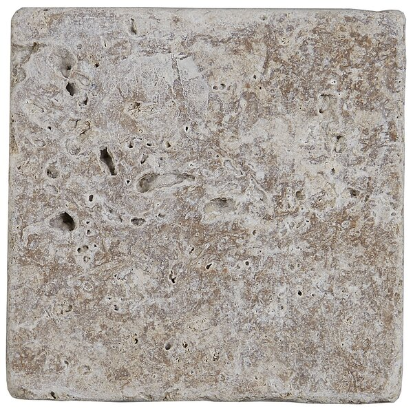 Hopkins 4 x 4 Travertine Field Tile in Light Noce by Itona Tile