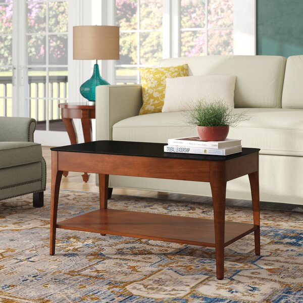 Elliott Bay Coffee Table With Storage By Red Barrel Studio