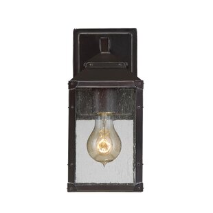 Savings Knushevia 1-Light Outdoor Wall Lantern By Brayden Studio