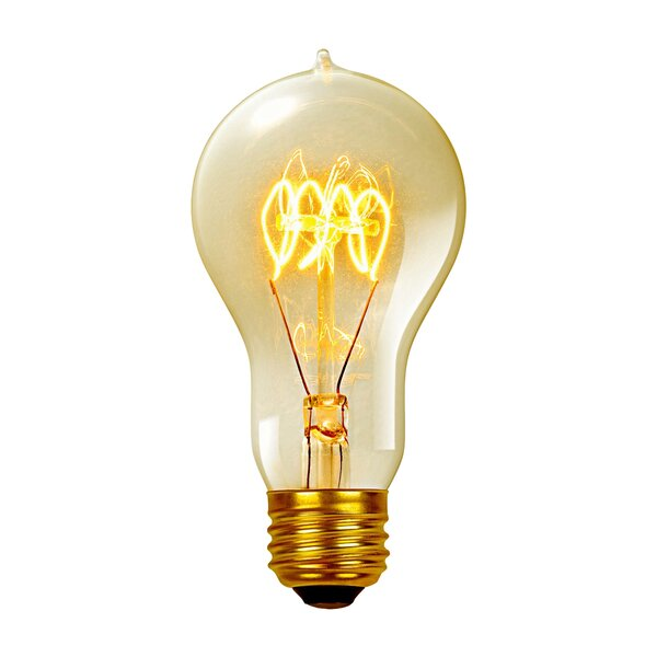 Vintage Edison 60 Watt (2700K) A19 Quad Loop Incandescent Filament Light Bulb by Globe Electric Company
