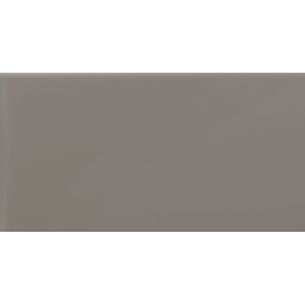 Choice 12 x 24 Ceramic Field Tile in Glossy Taupe by Emser Tile