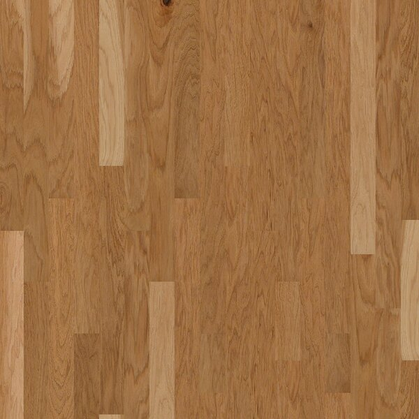 Globe 3.2 Engineered Hickory Hardwood Flooring in Point Arena by Shaw Floors