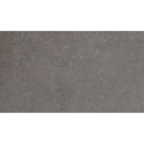 24 x 48 Porcelain Field Tile in Gray by MSI