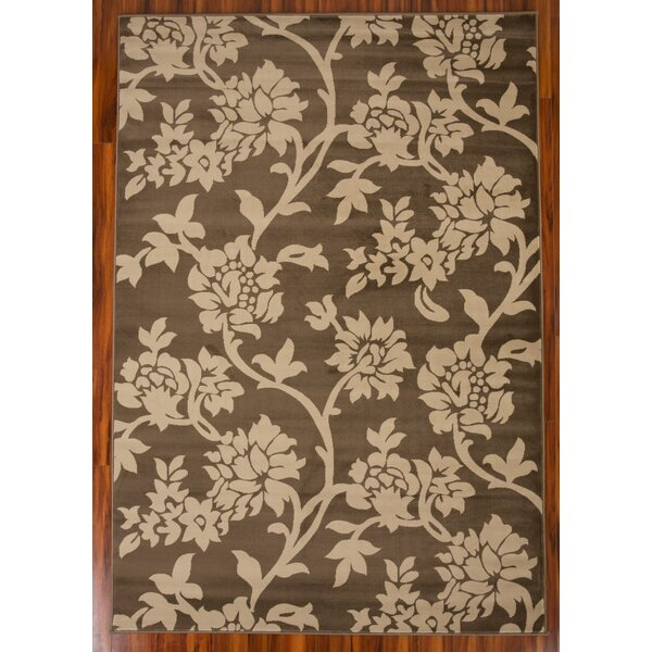Paloma Floral 1608 Brown/Beige Area Rug by Charlton Home