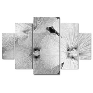 Sheer Malva by Kathie McCurdy 5 Piece Photographic Print on Wrapped Canvas Set by Trademark Fine Art