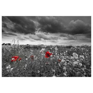Red Pop Poppy Field Photographic Print by Prestige Art Studios