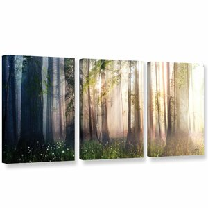 Constancy 3 Piece Graphic Art on Wrapped Canvas Set by Loon Peak